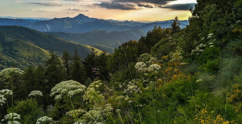 Sur les sentiers de Ceüse – On the trails of Céüse
