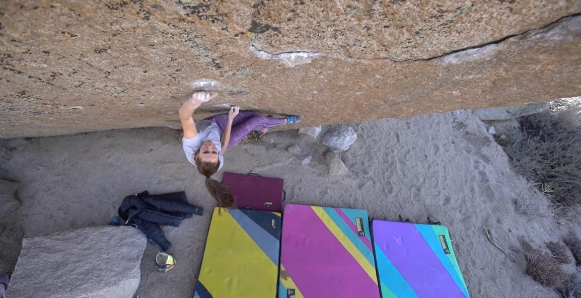 Alex Johnson The Swarm V13/14